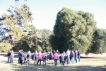 Gallipoli Oak Project launch