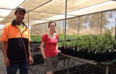 Smith and Gordon Nursery greenhouse
