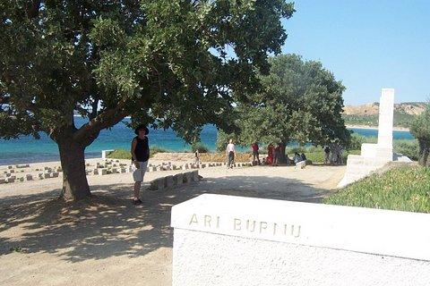 Gallipoli Oaks in Turkey (photo courtesy of David Lawry)